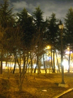 The next 3 photos are a panorama of my neighborhood...